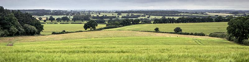 Buckinghamshire Countryside near Milton Keynes ©Ashley Beolens