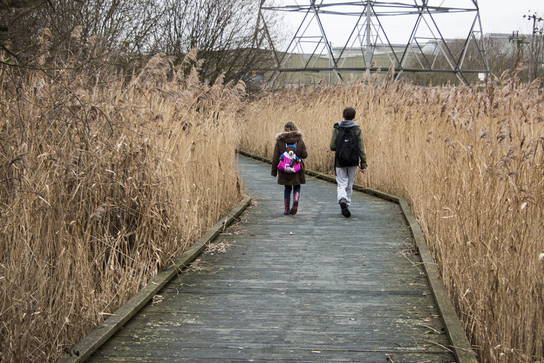 Rainham Marshes Nature Reserve - Board Walk